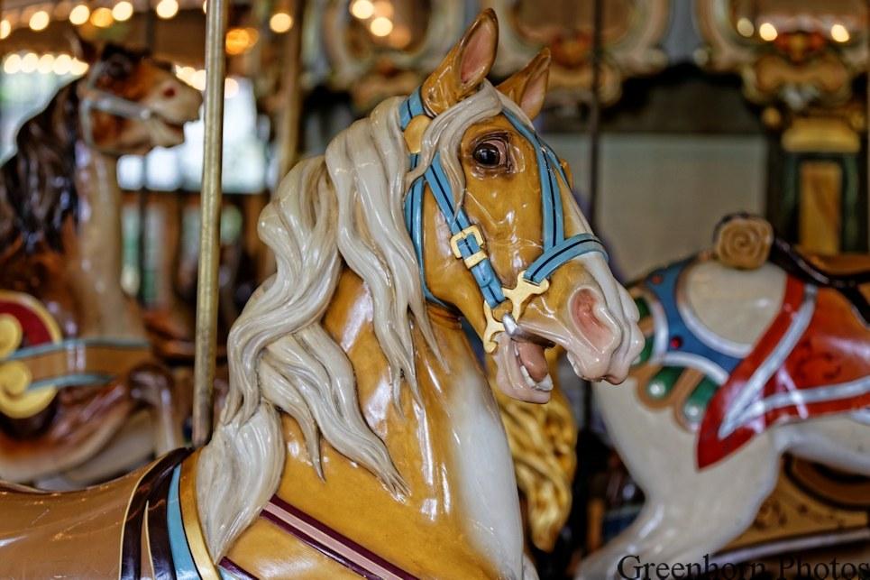 Frightened Carousel Horse