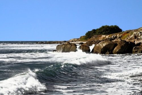 Santa Cruz Coastline